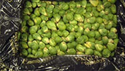 brussels_sprouts_pack.jpg